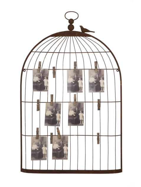 Metal Bird Cage Holder